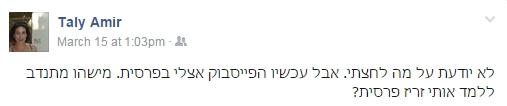 טלי אמיר2