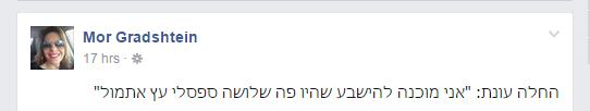מור גרדשטיין
