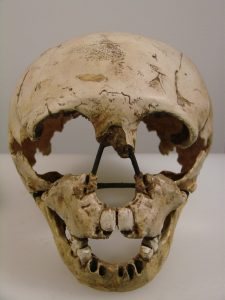 homo_neanderthalensis_face_university_of_zurich