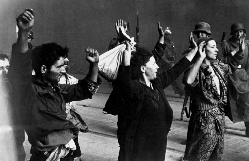 Women In The Haulocost
