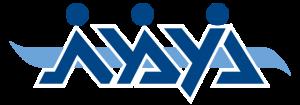 לוגו של ארגון נעמת