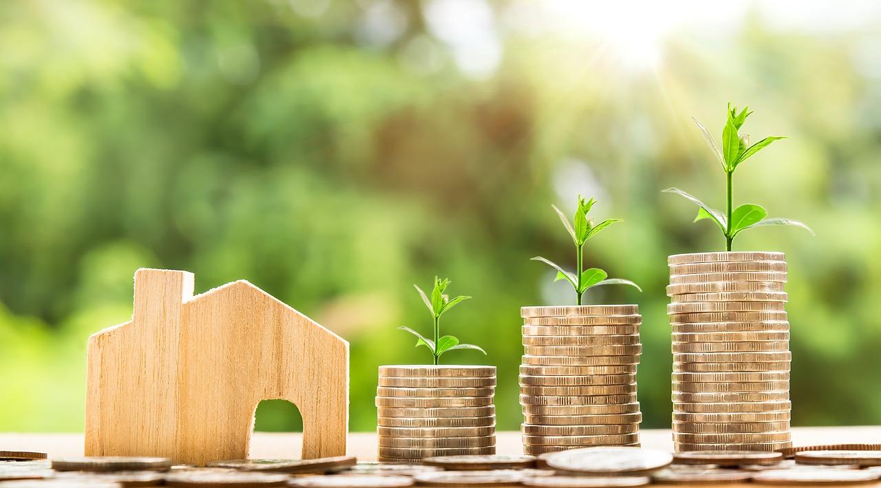 כלכלה מסוג חדש מיוצגת עם צמחים צומחים ממטבעות