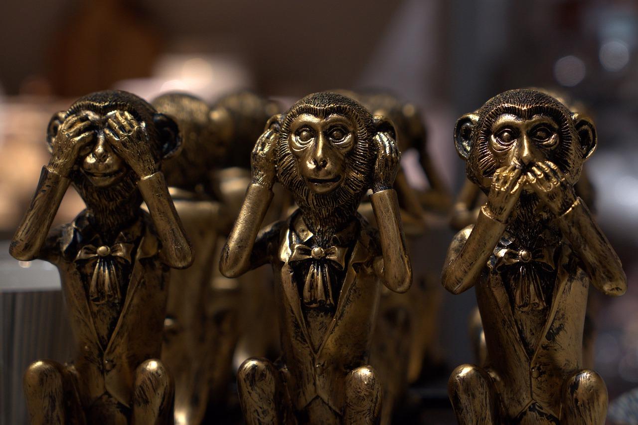 חשיבה מוסרית לא קיימת בשלושת הקופים