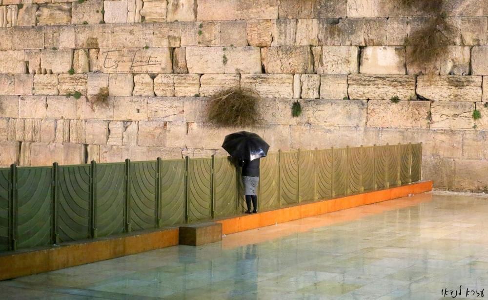 נשים חרדיות בתפילה יחידנית מול הכותל