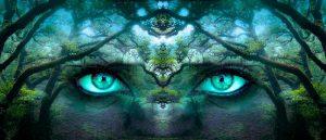ידע פמיניסטי נשי מיוצג בידי עיניים נשיות על רקע יער