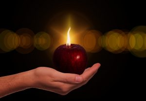 תפוח בגן העדן מייצג את השיר של יוכבד בן דור