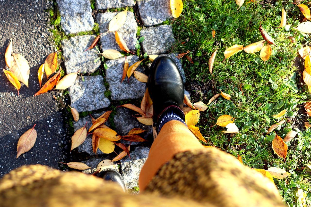 נעל שחורה עוזבת פריחה: אישה בורחת מתקווה כמו בשיר של ניצן צליק