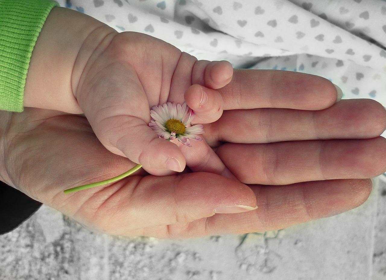 פונדקאות או אימוץ? תמונה של יד תינוק ויד הורה