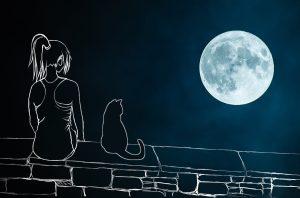 תמונה שמייצגת את השיר של ניצן אהלי מרון